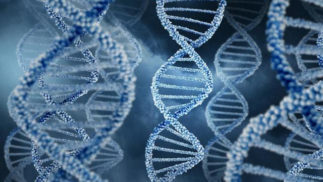The Privacy Delusions Of Genetic Testing