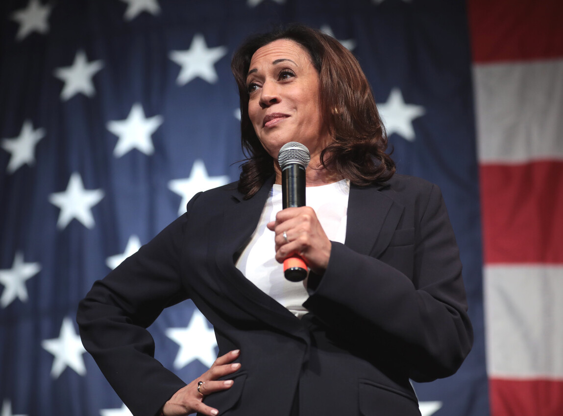 Kamala Harris Reminds Everyone Why She's Not President in a Train-Wreck Interview