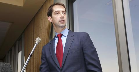 Cotton Emerging as Valued Trump Wingman in the Senate