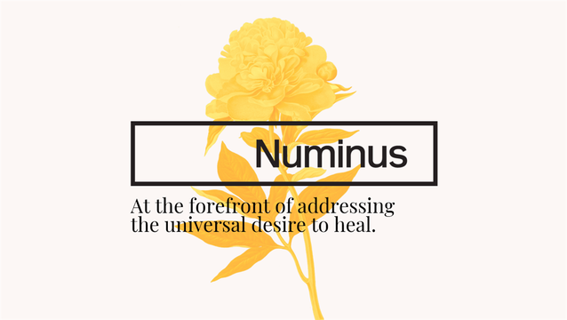 Dr. Evan Wood, recognized leader in the field of substance use research and treatment, joins Numinus as Chief Medical Officer