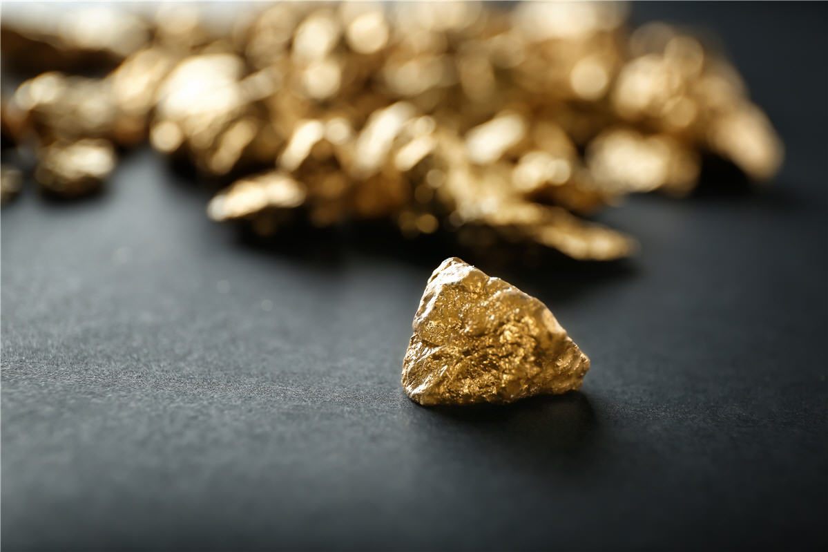 Exciting Gold Exploration Opportunity With Award-Winning Management Team