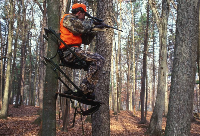 New federal hunting regulations are not good policy