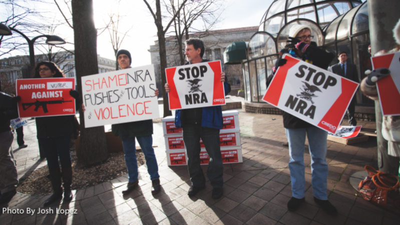 What are the Congressional Motives Behind NRA Investigations?