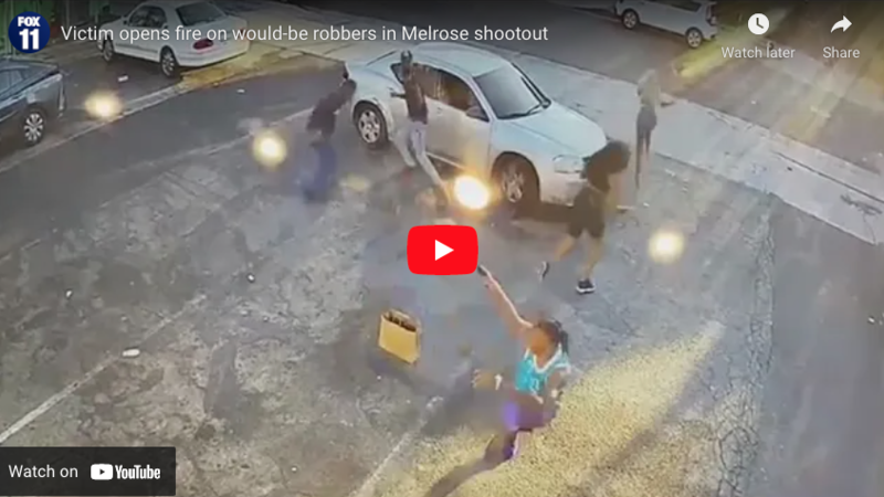 Moment armed LA robbers get shot in the legs as their victim pulls gun from his shorts and opens fire