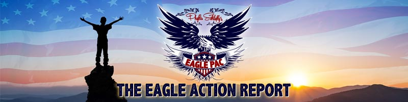 Eagle Action Report