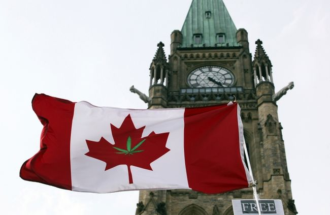 ​Canada's Licensed Producers Gear Up for Recreational Market