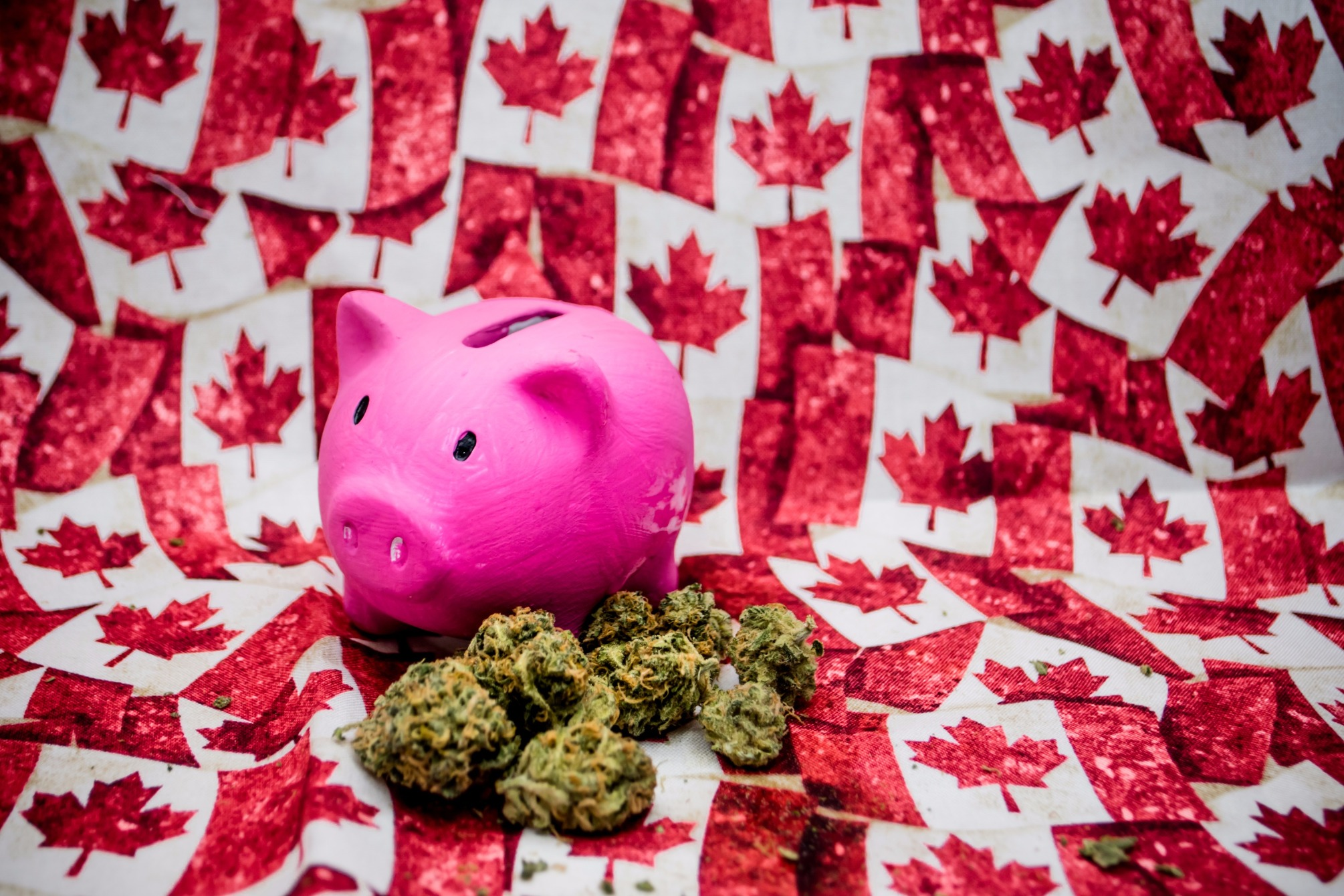 Coming Cannabis Recreational Demand in Canada Triggers Massive Investment
