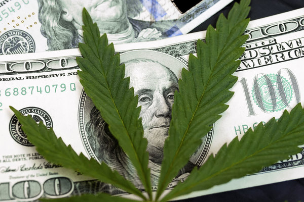 13 Reasons to Love Marijuana Stocks
