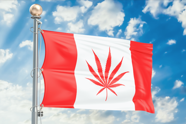 Alberta Reports $30 Million in Taxes Six Months After Cannabis Legalization