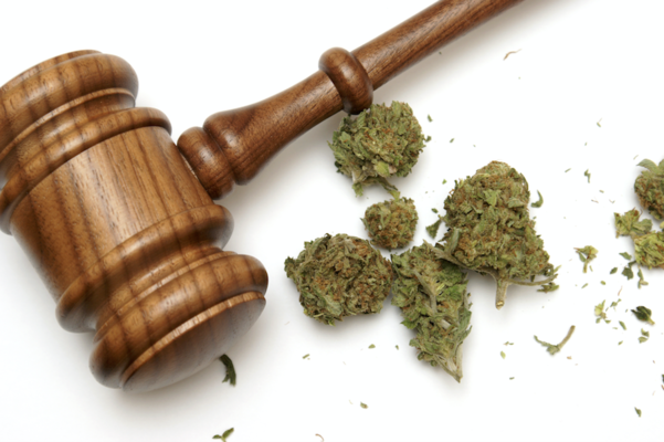 Forbes:  Federal Report On Marijuana Legalization Required Under New Bill