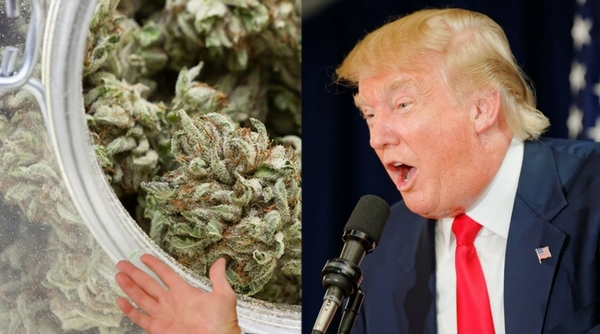 Multi-Millionaire Who Predicted Trump's Victory, Predicts Complete US Marijuana Legalization In A Few Weeks