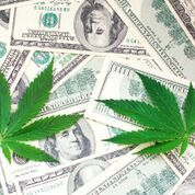 "These ""Comeback"" Marijuana Stocks Are Roaring To Life (Up 23% In A Single Day)"