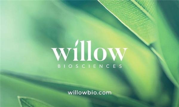 Willow Biosciences and Noramco Announce Biosynthesis Cannabidiol Platform for Joint Development
