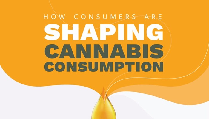 How Consumers Are Shaping Cannabis Consumption - Ionic Brands (CSE: IONC; OTCQB: IONKF) Infographic