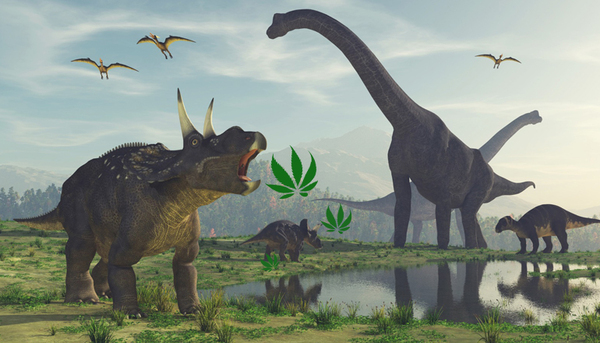 Anti-Cannabis Dinosaurs Continue to Undermine Industry