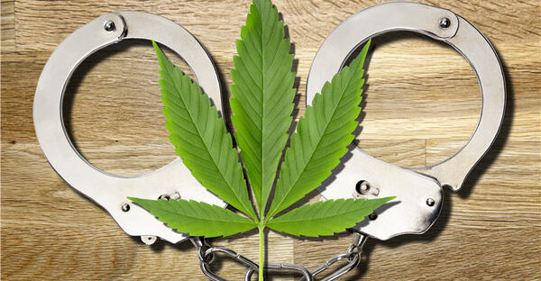 Why The U.S. Will Legalize Cannabis: Because Prohibition Has Gotten Too Silly