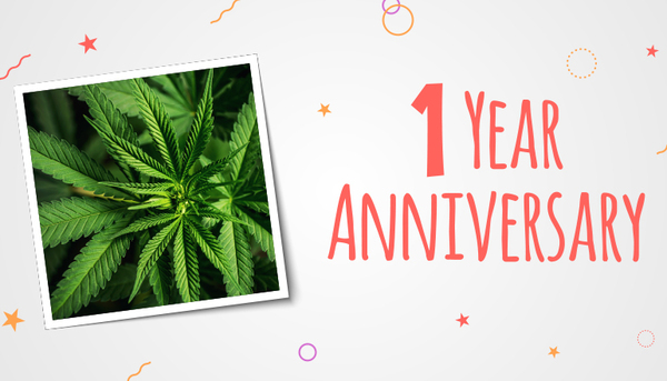 Canada's Cannabis Industry Celebrates 1st Anniversary