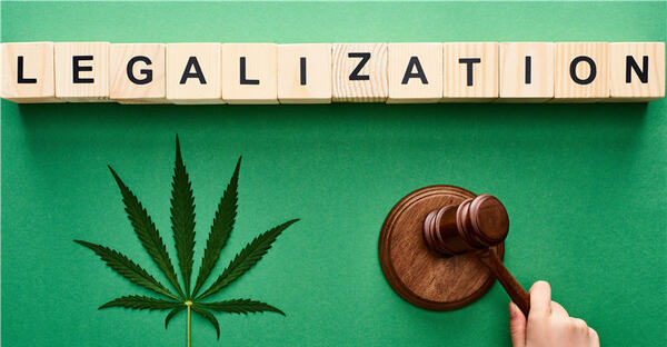 American Support For Cannabis Legalization Remains Strong