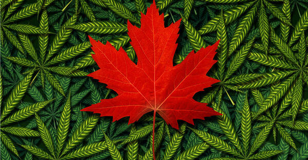 Why Canada Is (Still) #1 For Cannabis Investment Opportunities