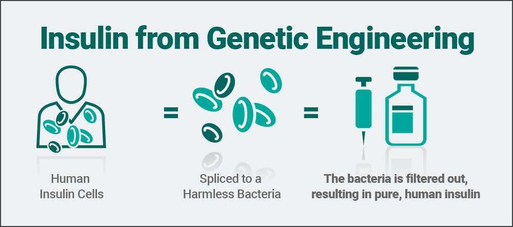 insuling-from-genetic-engineering-mobile