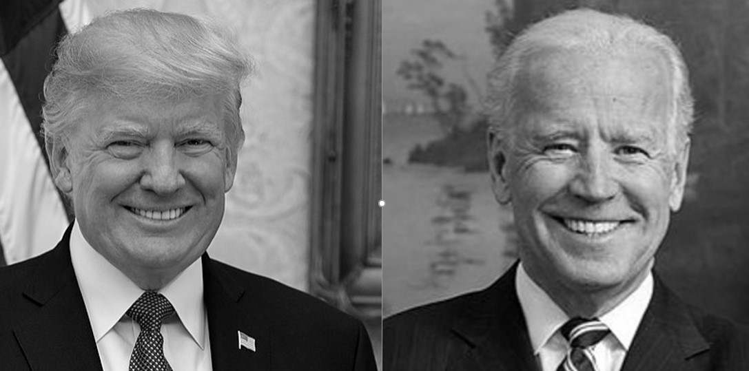 Trump Says He Would 'Absolutely' Take Biden's Call to Discuss Coronavirus Response