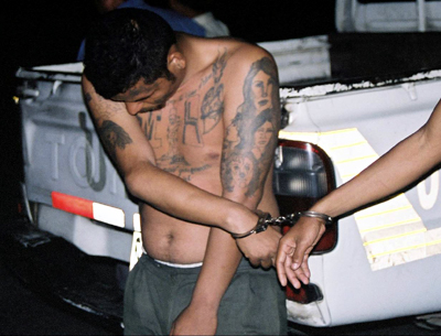 MS-13 Gangster Used Toddler for THIS, Reportedly