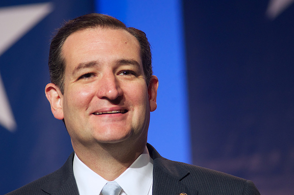Cruz proposes Out-Of-The-Box Wall Funding Plan