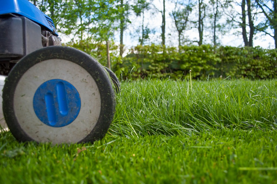 City Fines Elderly Man $30,000 Over Uncut Grass, Tries to Steal His Home