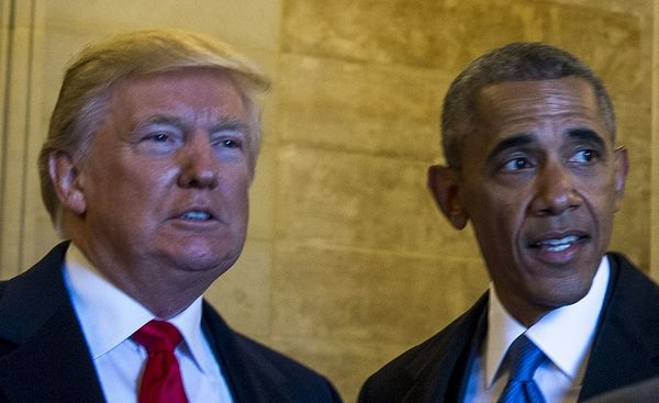Trump Polling Higher Than Obama At Same Point In Presidency