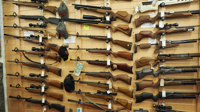 Guns Have Divided America. Here's What Happens When 245 People Try to Meet in the Middle