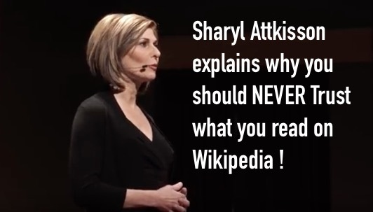 Why you CAN'T Trust Wikipedia | We the People Convention ...