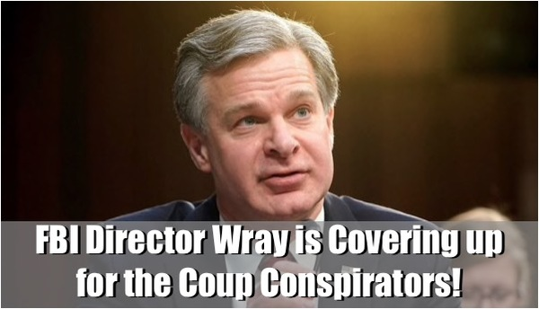 FBI Director Chris Wray's Actions Needs to be Investigated